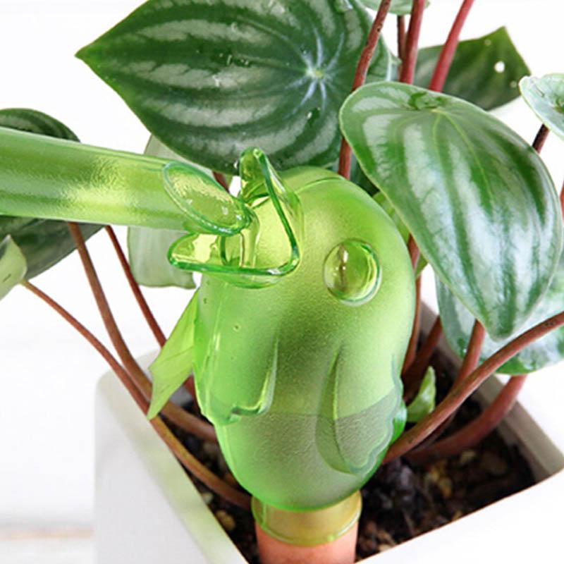 Réservoir d'eau ludique pour plantes 01