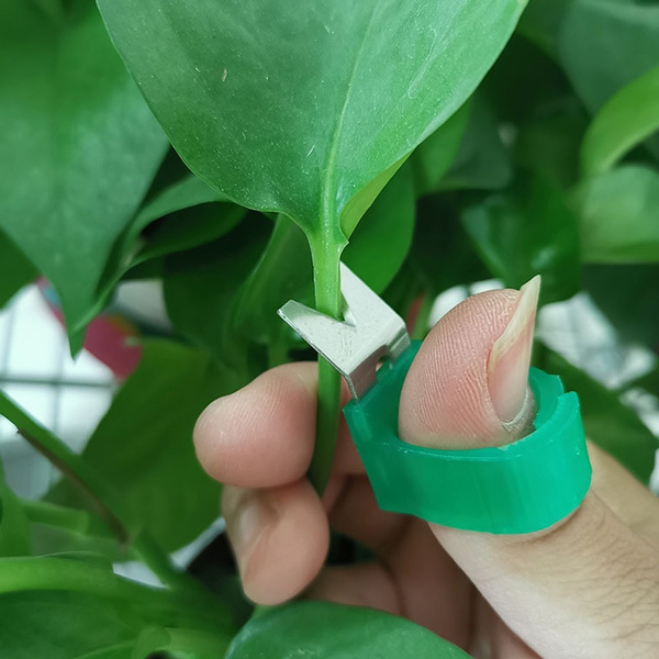 Mini Plant Pruner | Green
